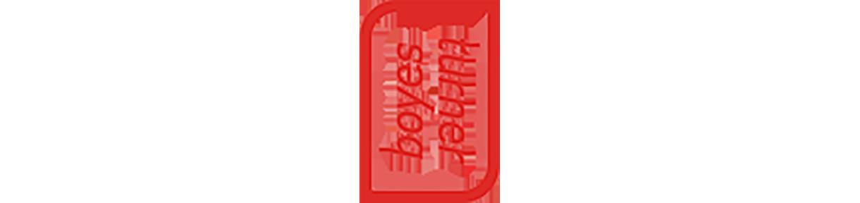 Boyes Turner